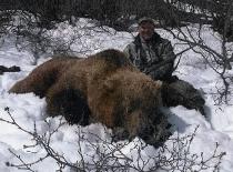 2011_bear_002
