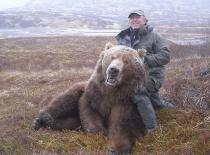 2011_bear_003